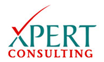 xpert consulting